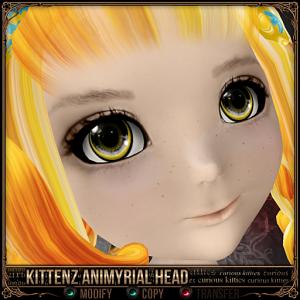 Kittenz Animyrial Head