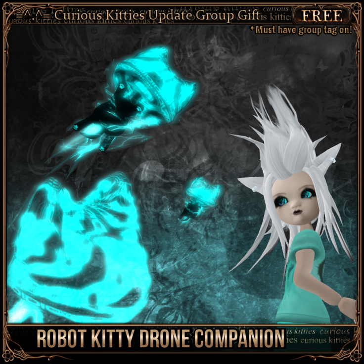 Robot Kitty Drone Companion
