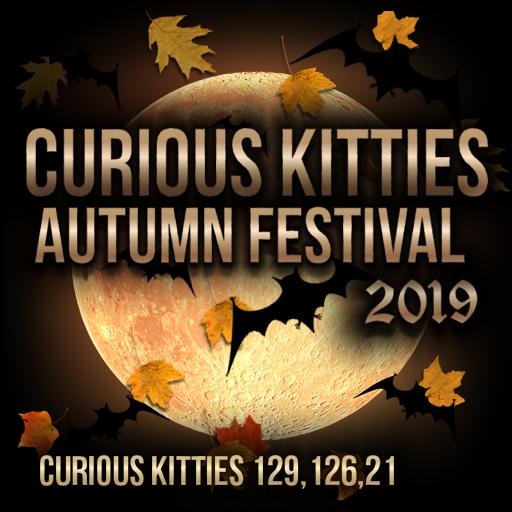 Halloween at Curious Kitties!